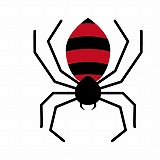 【ママ必見】都内の公園でもセアカゴケグモに注意が必要?