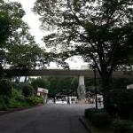 多摩動物園の紅葉はいつが見頃?子供と一緒に楽しむコースは?