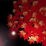 筑波山の紅葉の見頃と見どころは?ライトアップもあり?