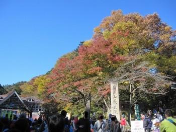 清滝駅付近紅葉