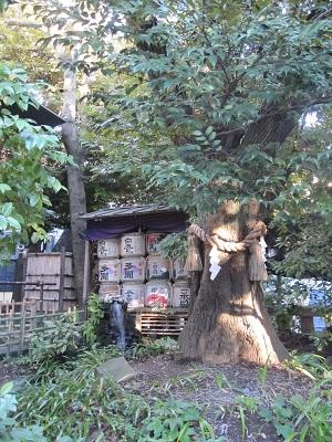 東京大神宮せせらぎ縁結びのお参りの大切なポイント