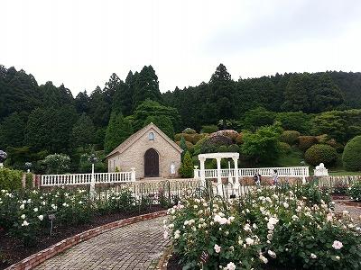 s-山のホテル庭 (1)