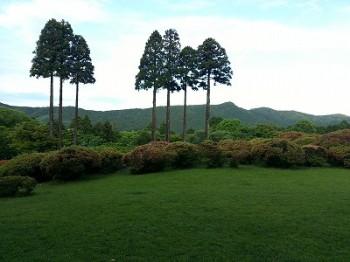 s-山のホテル庭 (2)