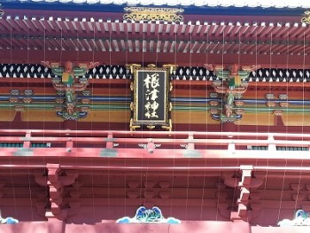 根津神社例大祭の時間と見所は?屋台の様子は?