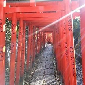 初午はいつ?初午祭東京ではどこに参拝?稲荷の意味とお供えは?