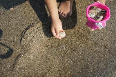 葛西海浜公園の潮干狩りは無料?アサリはとれるの?足洗い場はある?