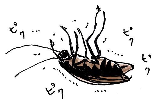 ゴキブリ対策にアロマが効果あり?保冷剤の活用とアロマスプレーの作り方は?