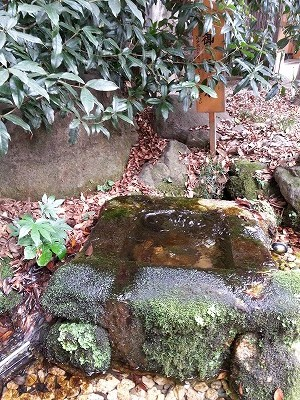 s-川越氷川神社縁結び (3)