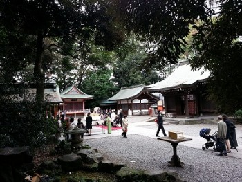 s-川越氷川神社縁結び (2)