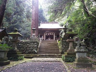 伊豆高原パワースポットの来宮神社って?見どころとアクセスは?