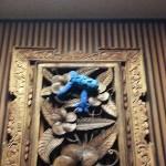 アンダリゾート伊豆高原で青いカエル探し♪場所は?