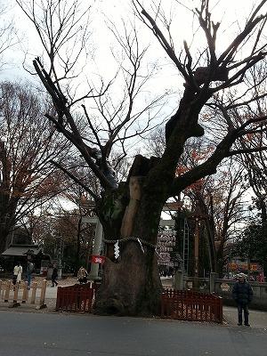 大国魂神社 (2)