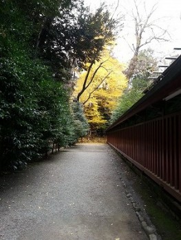 大國魂神社縁結び (11)