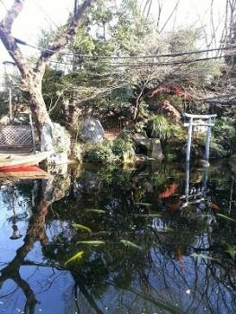 s-愛宕神社0113 (14)