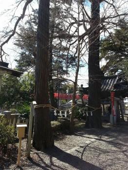 s-玉前神社 (20)