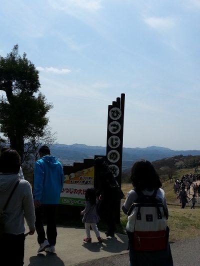 s-マザー牧場ひつじの大行進 (2)