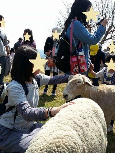 s-マザー牧場ひつじの大行進 (21)