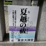 夏越の祓い東京大神宮は6月30日・茅の輪くぐりと形代の仕方は?