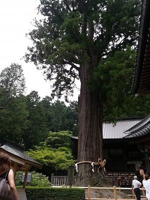 s-富士浅間神社 (14)