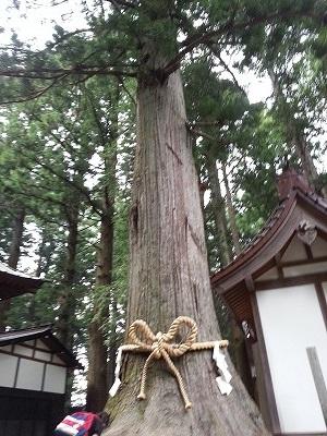 s-富士浅間神社 (4)