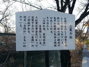 稲積神社 (2)