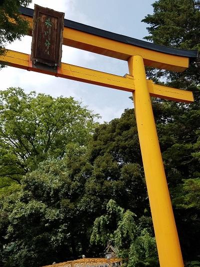 川越氷川神社バス本川越からのアクセスは?バス乗り場と時刻表も。