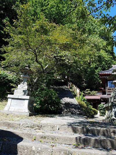 金桜神社杉林の入り口