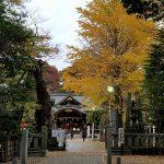布多天神社のご利益と時間とアクセスは?酉の市情報も。