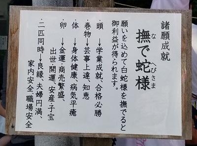 川越熊野神社撫で蛇様