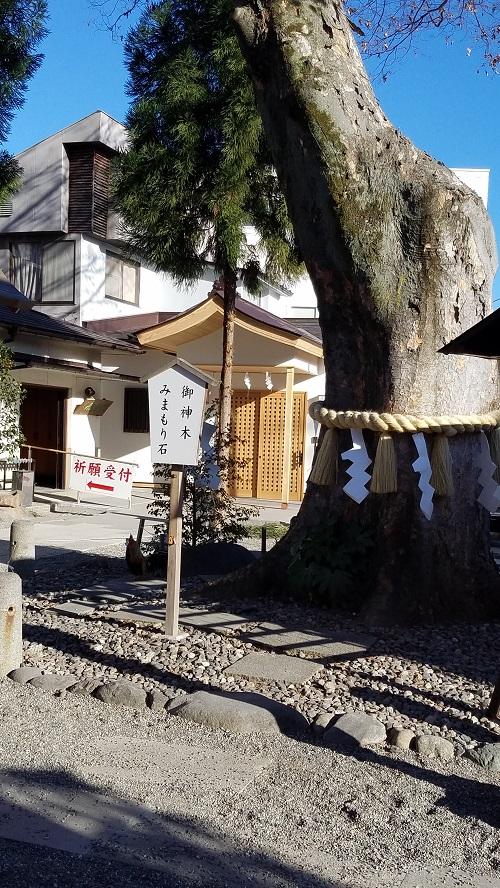 稲積神社ご神木とみまもり石