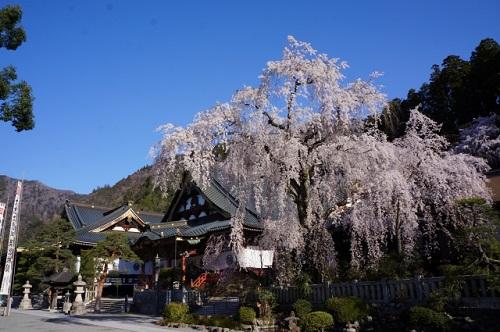 身延山久遠寺アクセスは都内から電車とバスで!高速バスやバスツアーが便利?